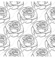 rose seamless pattern flowers vector image