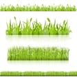 Set grass image vector image