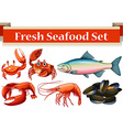 different kind fresh seafood vector image vector image