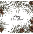 hand-drawn fir frame with pine cones and vector image