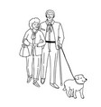 happy couple senior people walking with dog vector image vector image