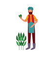 indian farmer man stands holding cotton plant vector image vector image
