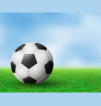 realistic soccer ball on field from side view eps vector image vector image