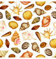 sea shell seamless pattern with marine mollusk vector image vector image