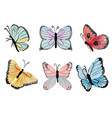 watercolor hand drawn colorful butterfly vector image