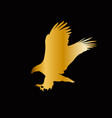 golden silhouette of eagle isolated on blac vector image