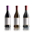 red wine bottle set of white rose and red wine vector image