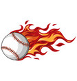 baseball with flames in white background vector image