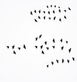 birds fly south vector image vector image