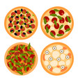 pizza on a white background vector image vector image