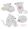 set with cute mouse vector image vector image