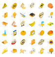 yellow fruit icons set isometric style vector image vector image