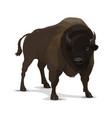 big cartoon bison wild animal vector image