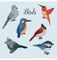 Birds Set in Hand Drawn Style vector image