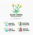 black fungus design bundle vector image
