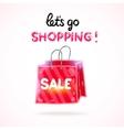 Cartoon shopping bag sale vector image