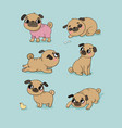 cute cartoon pug set cheerful funny dog picture vector image vector image