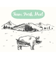 Drawn pig meadow farm fresh products sketch vector image vector image