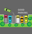 good parking car parked in appropriate way vector image vector image