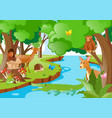 many animals living by the river vector image vector image
