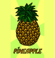 stylized pineapple on beautiful background vector image vector image