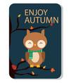 enjoy autumn owl background image vector image
