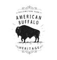 American buffalo vector image vector image