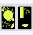 banner template with citrus branches and slices vector image