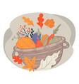 basket with harvested vegetables autumn pumpkin vector image vector image