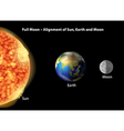 Earth moon and Sun alignment vector image vector image