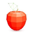 Geometric Red Apple vector image