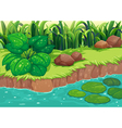Green plants along the river vector image vector image