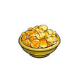 hand drawn bowl full of crispy potato chips vector image