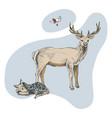 hand drawn deer familie vector image vector image