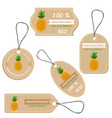 labels with various fruitsfor pineapple vector image vector image