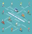 personal eco transportation flowchart vector image vector image