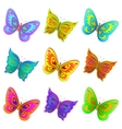 set butterflies vector image