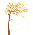 tree with falling leaves vector image vector image