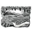 vineyard with frame hand draw vintage engraving vector image