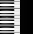 black and white keys vector image vector image