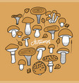 set autumn mushrooms in doodle line drawing vector image