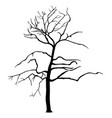 tree silhouette isolated spooky tree halloween vector image