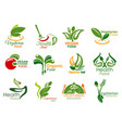 vegetarian restaurant and organic food icons vector image vector image