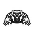 bear mascot logo silhouette version vector image vector image