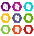 classic shorts icons set 9 vector image vector image