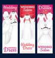 salon wedding dresses bridal gowns boutique vector image