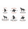 Set of vintage wolf logo and label design elements vector image