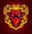 fire head red bulls mascot vector image