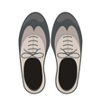 Isolated male shoes design vector image vector image