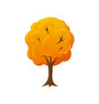 cartoon style fall autumn tree vector image